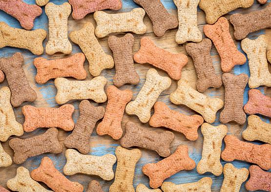 pet-foods